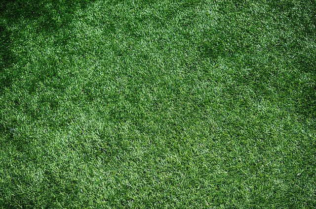 Why not Artificial turf