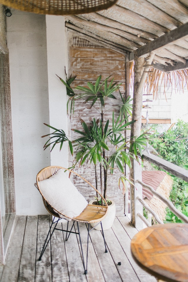 Architectural And Exotic Plants